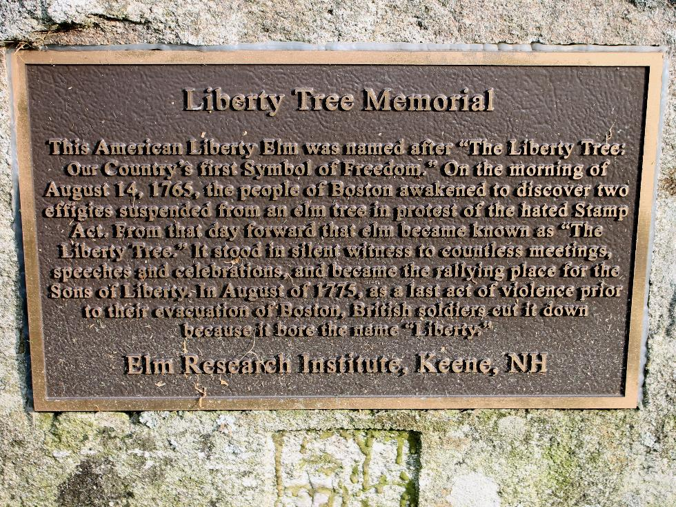 Princeton Massachusetts Liberty Tree